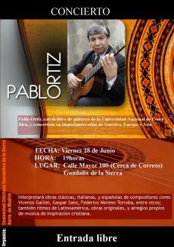 cartel concierto guitarra junio 2013