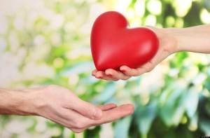 cultivando los lenguajes del amor
