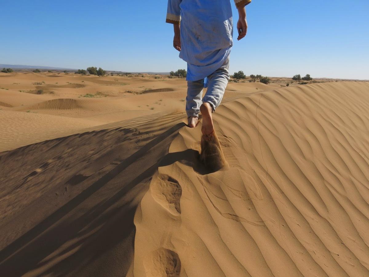 Errantes en el desierto